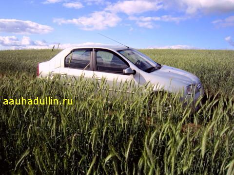IMG 2450 Бюджетный автомобиль
